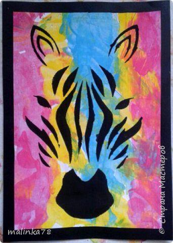 Радужная зебра фото 1