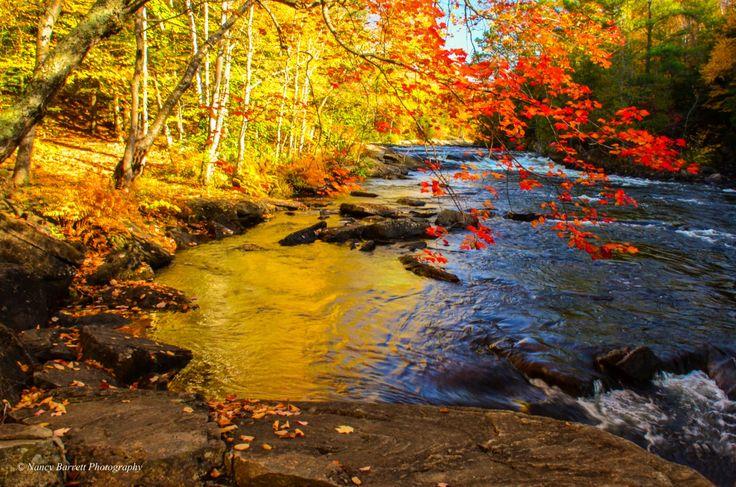 Oxtongue River Rapids, near Algonquin, Ontario
