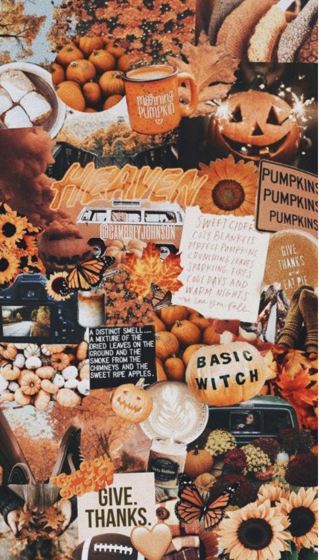 fall wallpaper !!