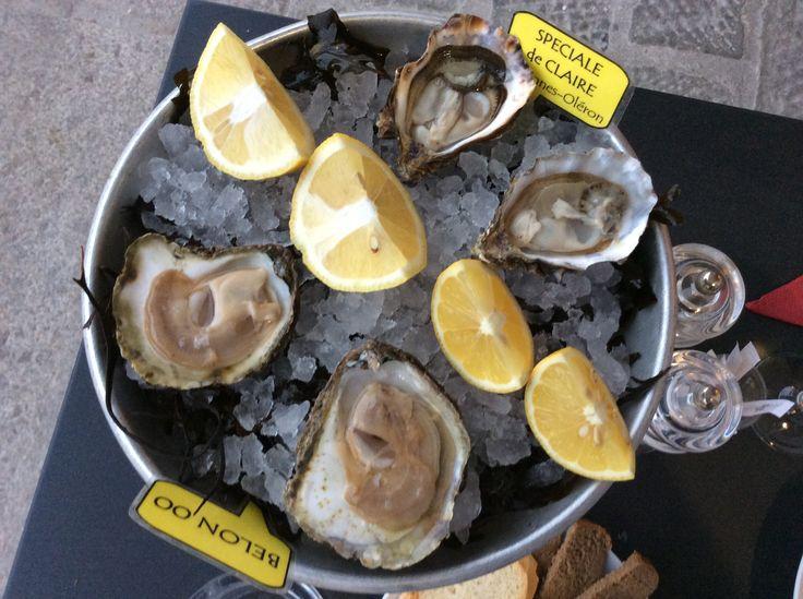 Oysters, Genova, Italy