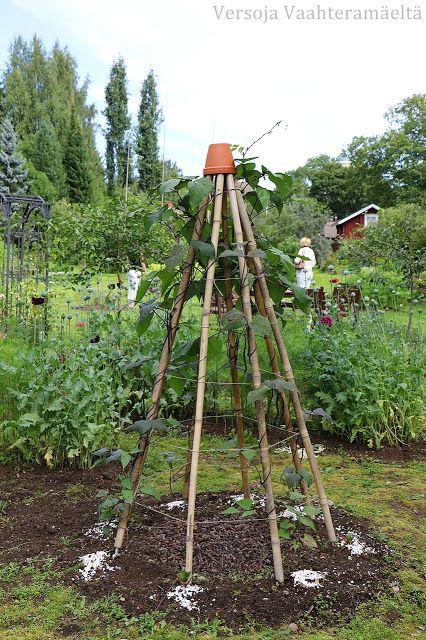 Versoja Vaahteramäeltä: Avoimet puutarhat