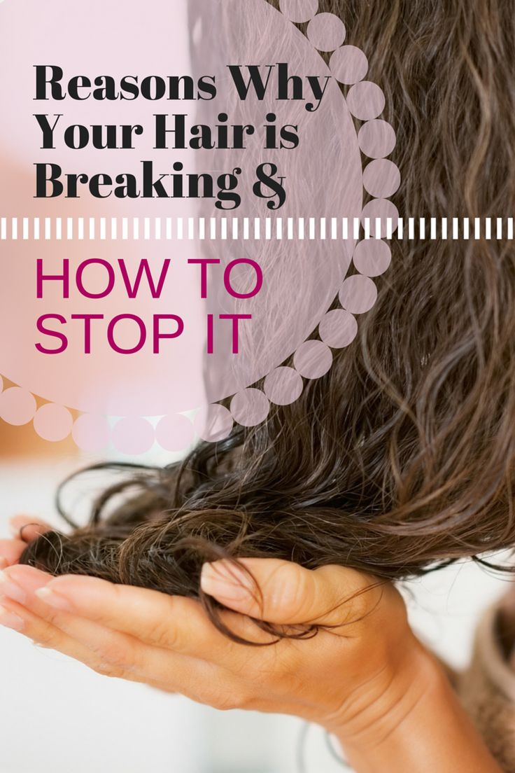 Recovering from Hair Breakage: Reasons Why Your Hair Is Breaking & How to Stop It! LEARN MORE HERE http://hairfinity.com/blog/recovering-from-hair-breakage/