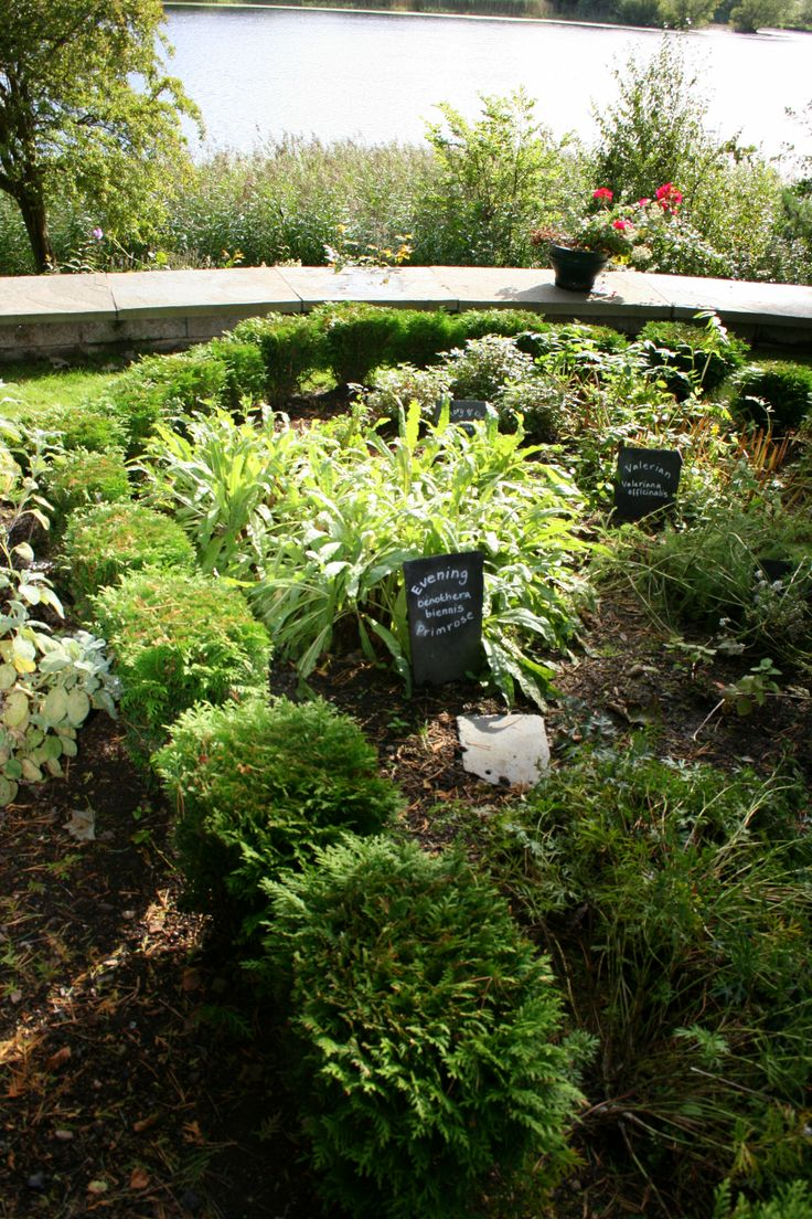 The Physic Garden, planted in memory of Dr Andrew Neil and Dr Nancy Neil.