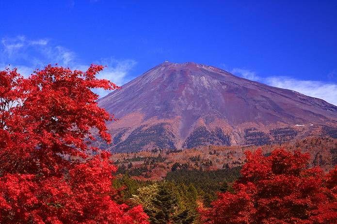 富士山 画像 紅葉