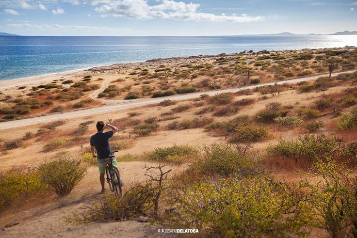 looking at the horizon, La Ventana,BCS #josafatdelatoba #loscabos #cabophotographer  #photoshoot #loscabos #laventana #editorialphotography