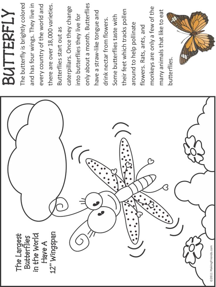 Butterfly Fact and Coloring Page