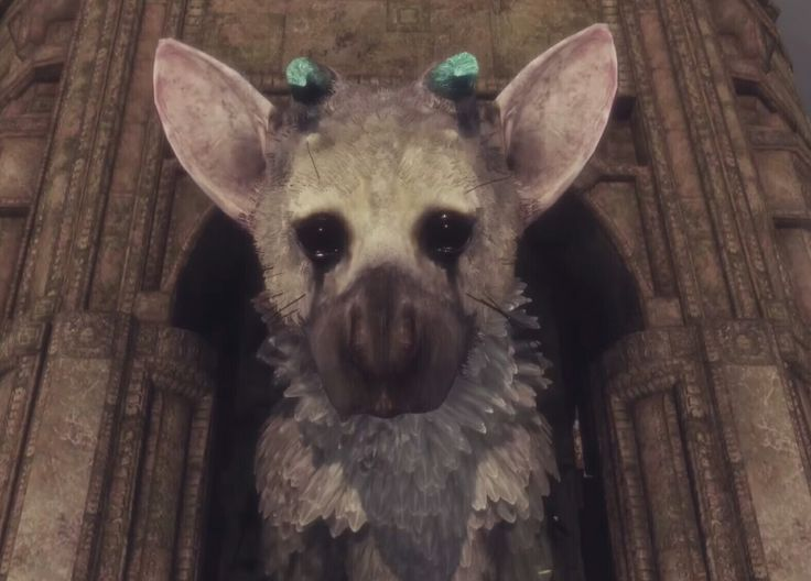153 Best The Last Guardian Images On Pinterest Drawing Crafts And Drawings