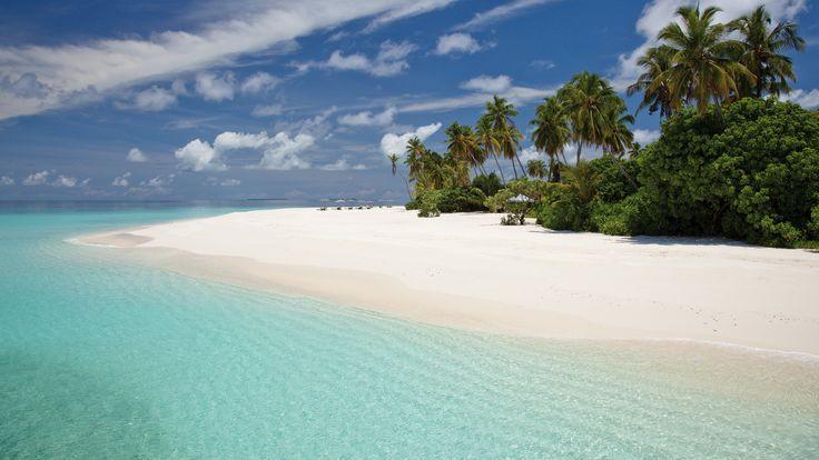 Dit zonovergoten eiland met zijn spierwitte zandstranden. Achter de kustlijn is de omgeving weelderig groen en zorgen talrijke tropische bloemen voor een kleurrijke variëteit. #Maldives #GaafuAlifuAtoll