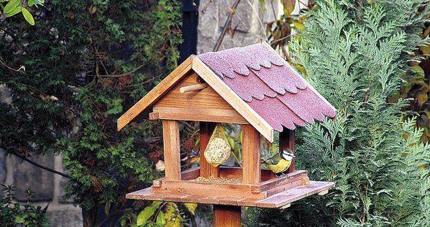 Krmítko pro ptáky je nejlepší umístit na kůl do výšky, aby bylo chráněné před kočkami.