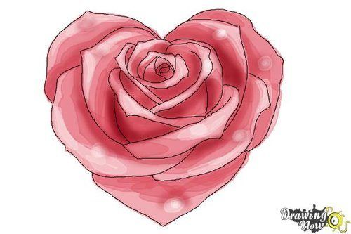 How To Draw a Heart Shaped Rose. Have fun drawing from these 50 selected rose drawing tutorials. Each how to draw a rose tutorial has easy step by step instructions or a video tutorial. #drawing #tutorial #rose See more at https://easydrawingguides.com/how-to-draw-roses-50-best-tutorials/.