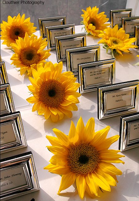 Sunflower heads near the table seating cards.  For more sunflower wedding ideas: http://www.squidoo.com/sunflower-weddings