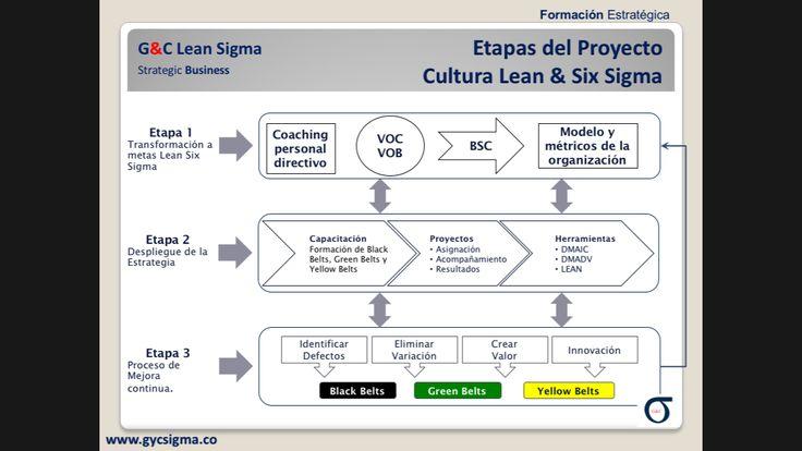 Implementación de la Estrategia de Negocios Lean Six Sigma.