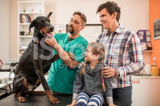 Семьи, которые их pet на медицинский осмотр на ветеринара's. – роялти-фри стоковая фотография