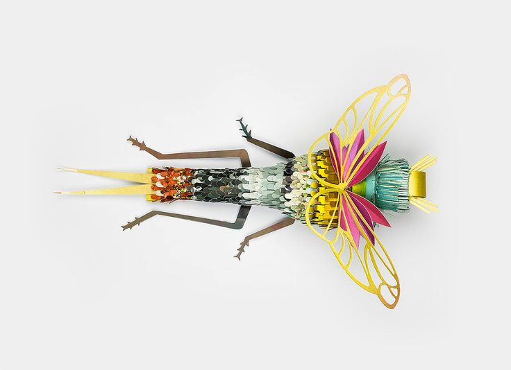 reclaimed paper insects