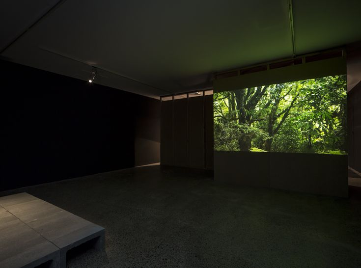 Blaine Western's The Fold of The Land, as installed at Te Tuhi.   Although this is a clearly clever installation, with its measured corridors, overtly panelbased walls, precise lighting and palpably emotional content, for me the film within it is a special treat, especially Frengley's camerawork under Western's instructions. It has a tight organisational structure that would let it be appreciated in a non-installational, non-architectural context.