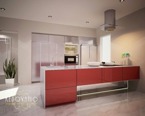 Red vs metal color for a high tect kitchen  looks