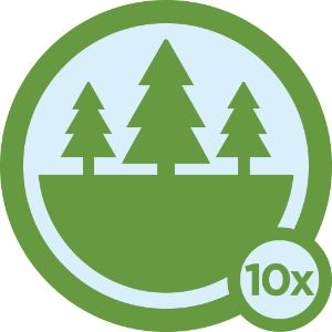Great Outdoors Badge