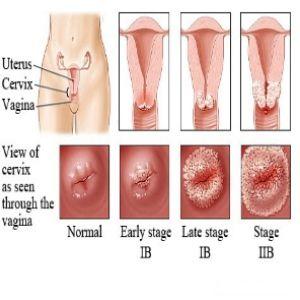 Sperm sucking ass