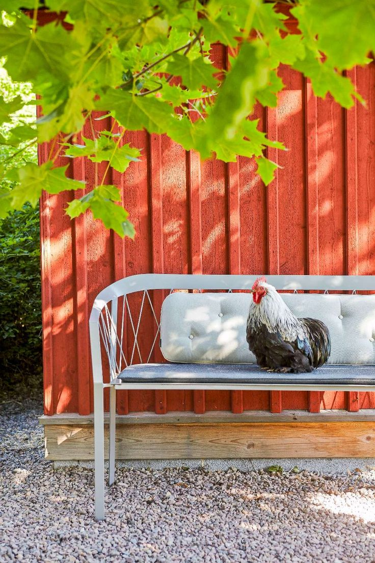 Thinking about new furniture for the garden?  See my styling for the Swedish magazine Lantliv. Styling by me Anna Hänström, @inthemoodforthings Foto Klas Sjöberg,  @klassjoberg  #outdoor #furniture #garden