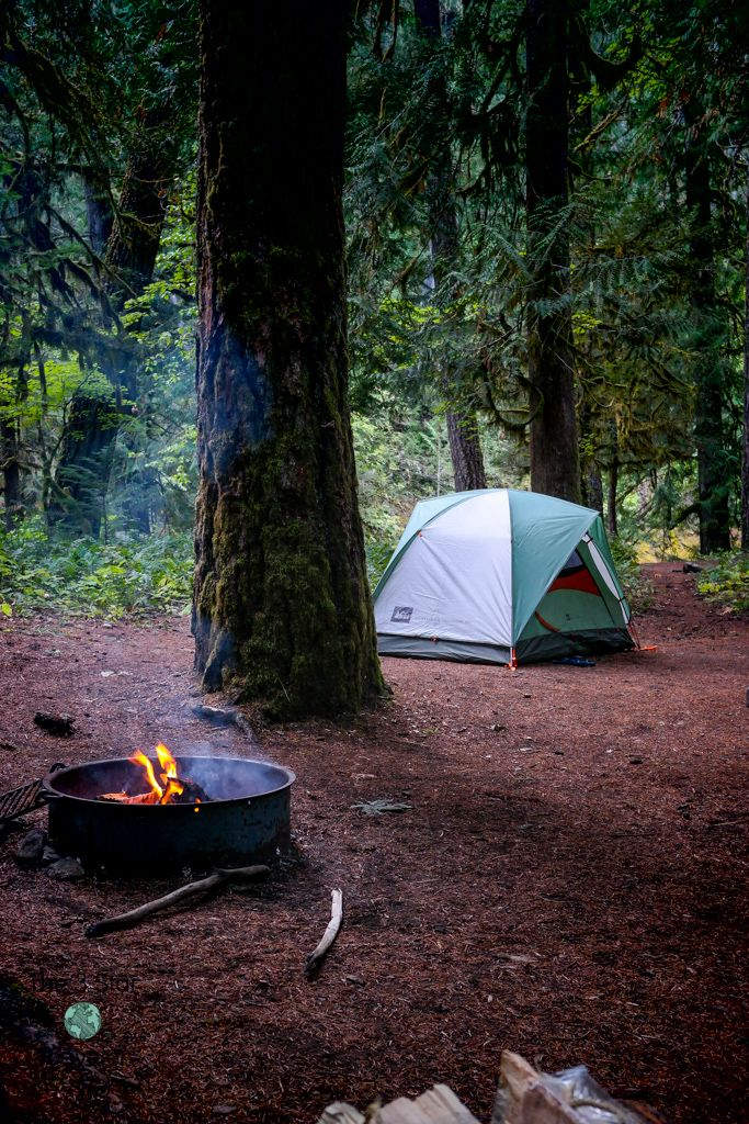 La Wis Wis Campground, Gifford Pinchot National Forest, Washington | National Parks Tips | The 3 Star Traveler