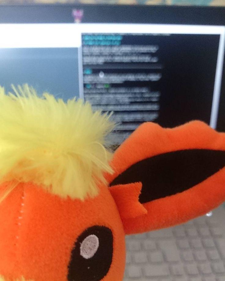 Coding tonight with #pyro . . #pokemon #pokémon #flareon #eevee #pokemontoys #coding #kodlama #doge #programmer #developer #html #css #django #node.js #javascript #programmergirl #codergirl #womencoding #computerengineer #programmer #programming #development #likeforlike #like4like #l4l #r4r #webdesign #nodejs