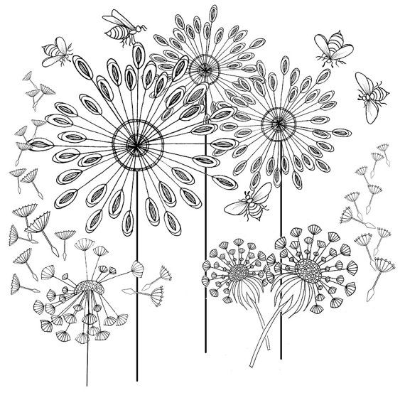 Adult Colouring Pages Of A Dandelion Art Design Printable Coloring As An Instant Download