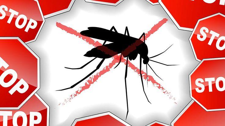 Repelent proti komárom a kliešťom  - Powered by @ultimaterecipe