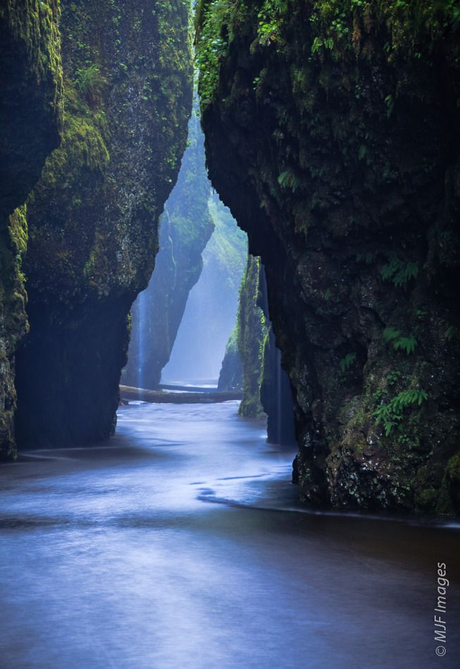 Columbia River Gorge Oneonta Narrows by Michael Flaherty