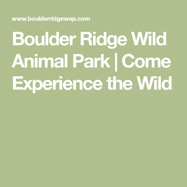 Boulder Ridge Wild Animal Park | Come Experience the Wild