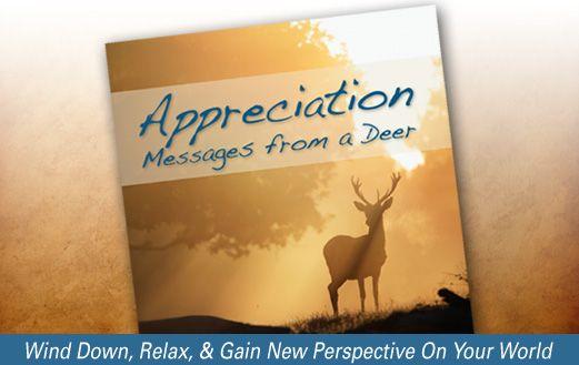 Free Guided Meditation till Sunday. Enjoy!