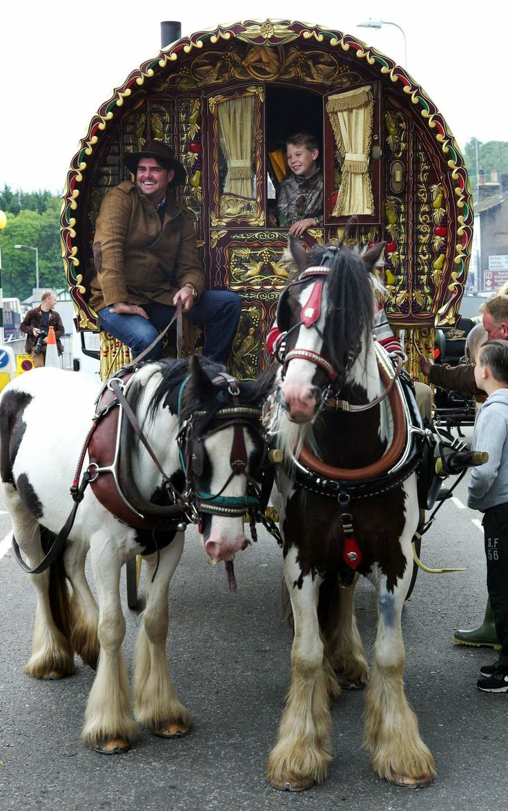 Viaggiatori e commercianti si mescolano a gitani e ai loro bellissimi #cavalli Gypsy Vanner durante la Appleby Horse Fair in corso a #Appleby (UK)  ©OLYCOM