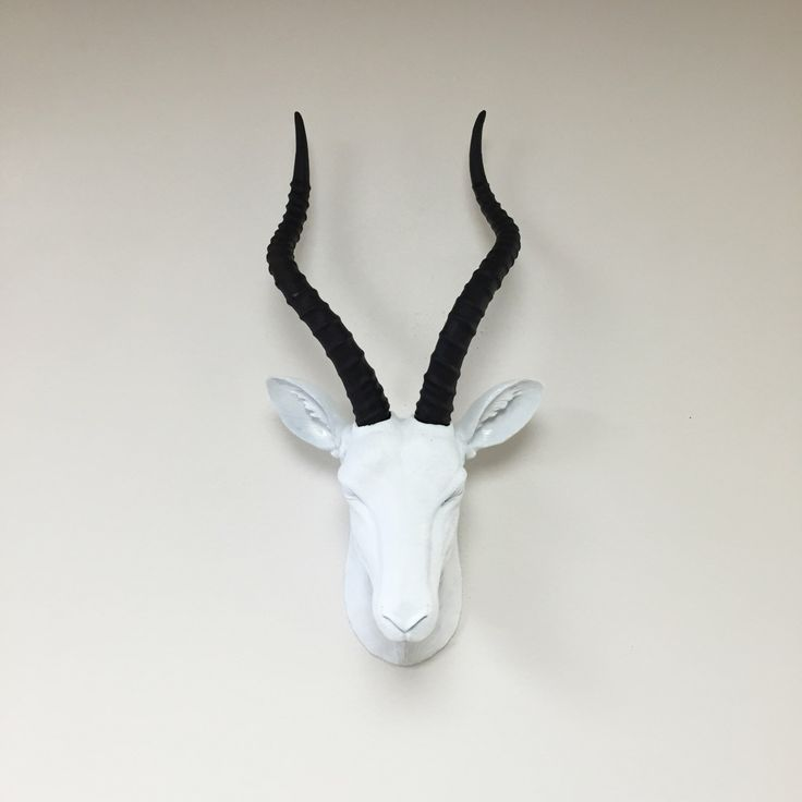 Animal Head Wall Decor pinterest'teki 25'den fazla en iyi animal head decor fikri