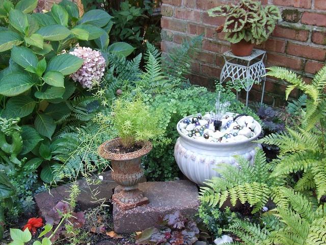 The shady corner: Photos, Gardens, Shady Corner