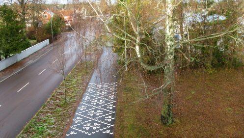 Bild på cykelväg
