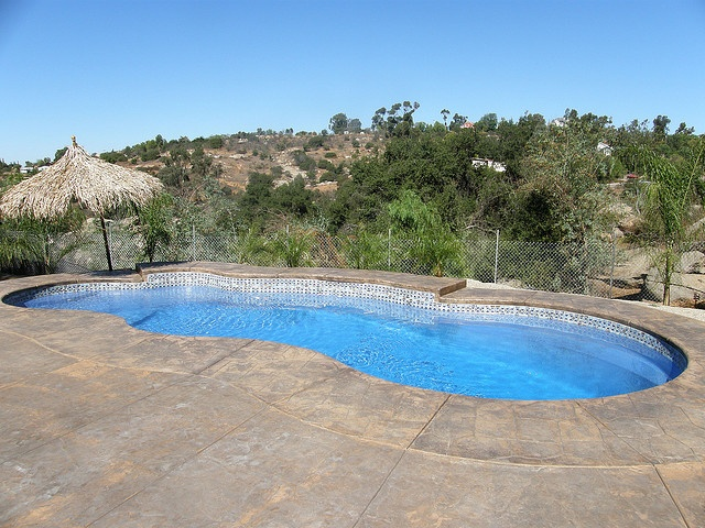 17 Best Images About Freeform Pool Designs On Pinterest