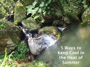 5 Ways to Keep Cool in the Heat of Summer- some of these may surprise you!