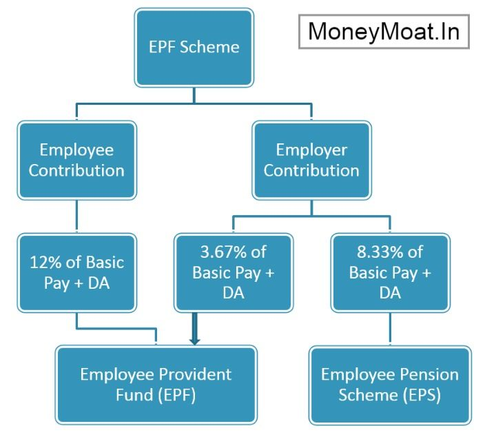 Epf Contribution Of Employee And Employer Employment Contribution Retirement Benefits