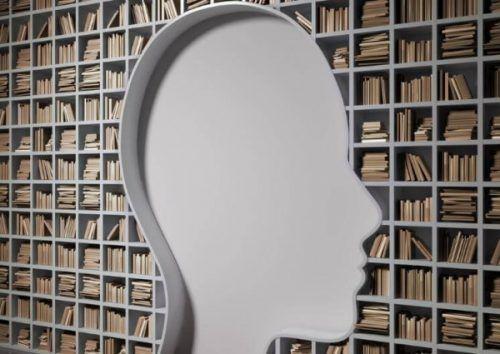 twarz-biblioteka