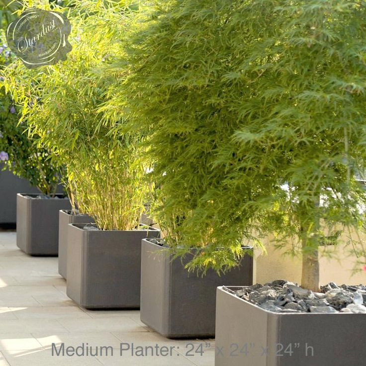 The 25 Best Large Outdoor Planters Ideas On Pinterest 400 x 300