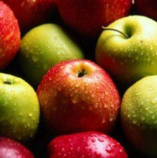Organic & Fat Burning Food For Weight Loss -- I never know whether to trust thes...