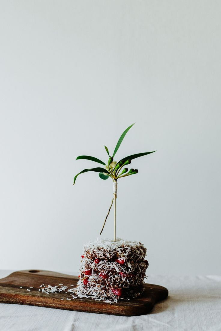 Lamington Mini Cake + Gum Leaf Cake Toppers — Erika Rax