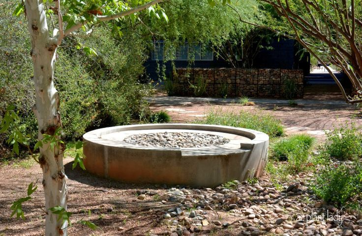 Water harvesting on the desert garden. As cistern fills with rain, the overflow is directed down a man-made arroyo lined with drought-tolerant plants.