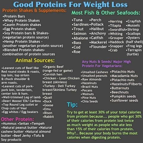 proteins help weight loss