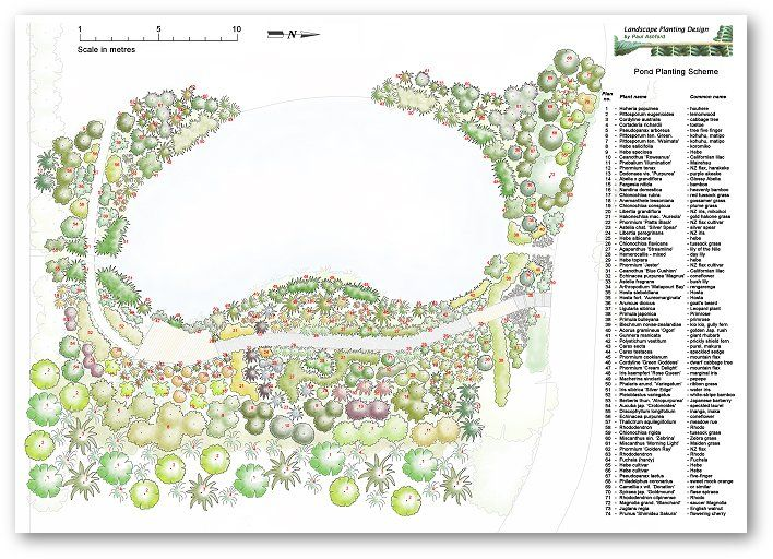 Pond planting and landscaping mosgiel 2006 design for Design of oxidation pond ppt