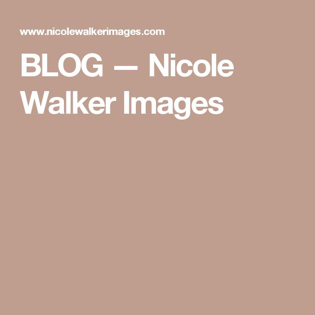 BLOG — Nicole Walker Images
