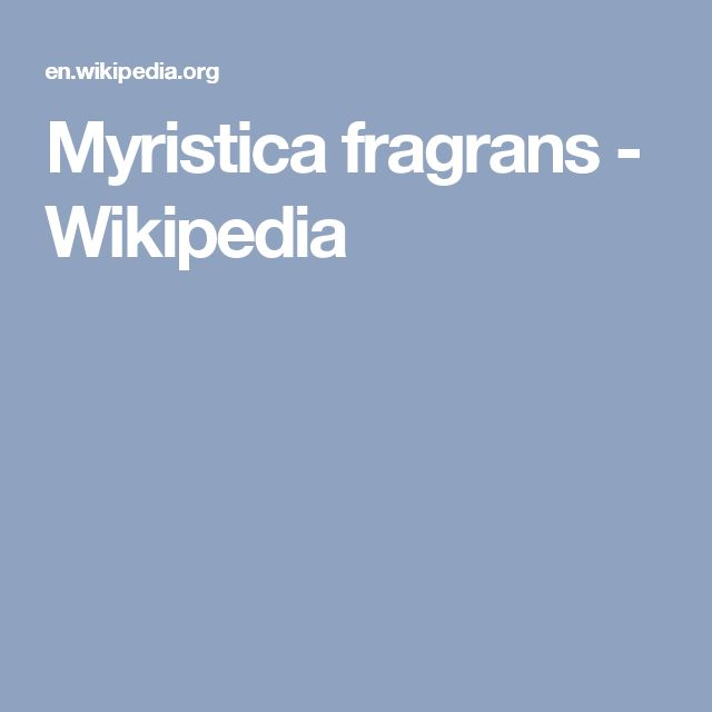 Myristica fragrans - Wikipedia