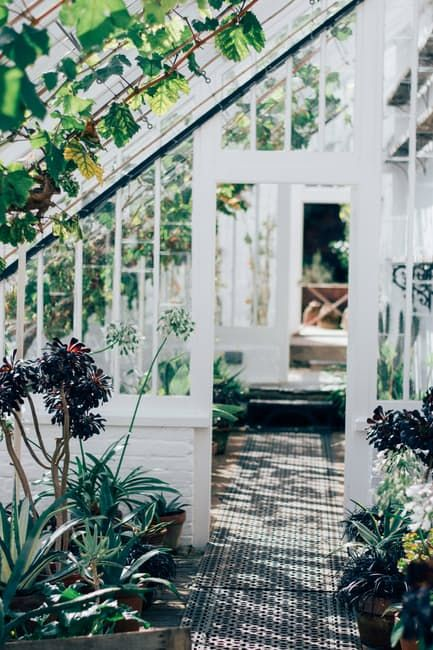 7 Simple Steps to a More Sustainable Home