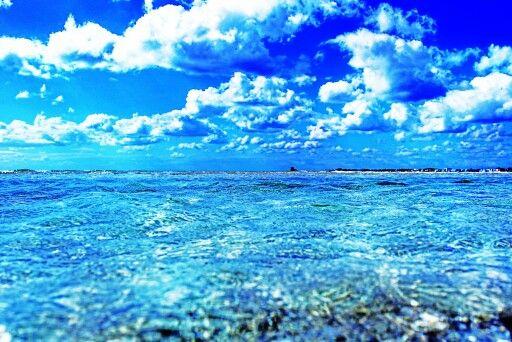 #salento #mare #spiaggia #sea #beach