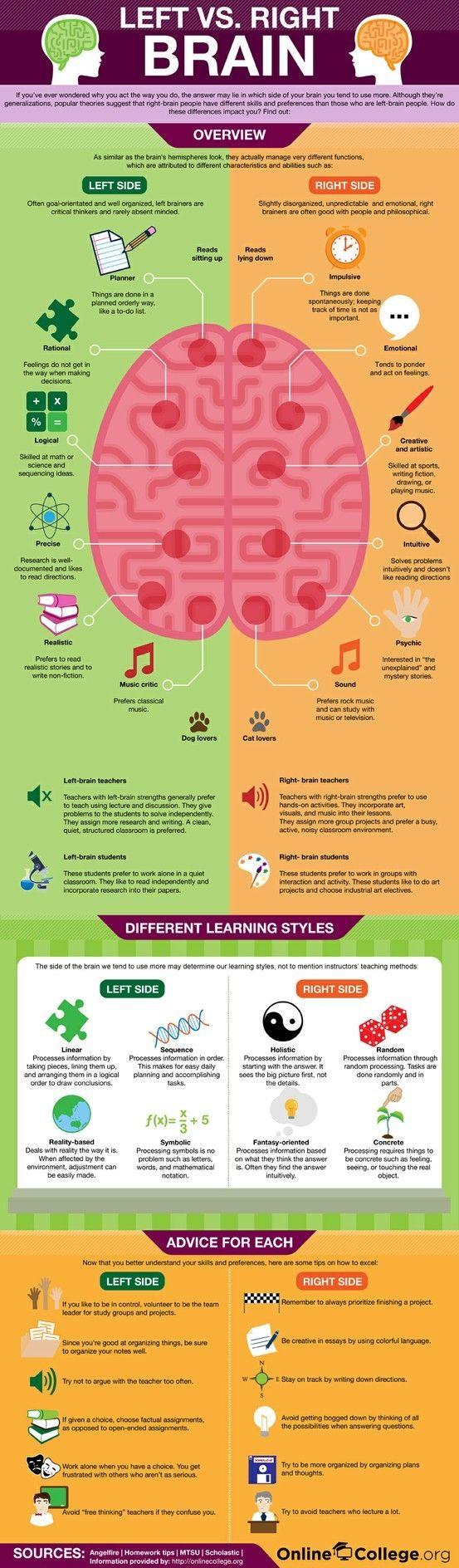 Left vs. Right Brain Infographic by myChelsss