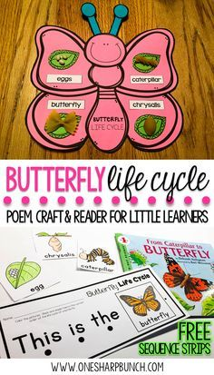 Teach your Kindergarten and primary students all about the life cycle of a butterfly with this butterfly life cycle poem, butterfly craft and FREE butterfly life cycle sequence strips! They are the perfect way to bring a little science into your spring activities! via /onesharpbunch/